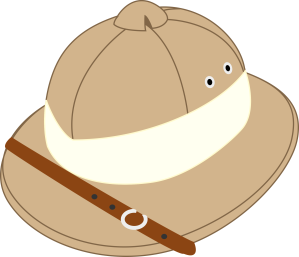 Salacot-explorer