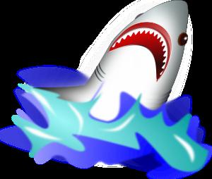 wsnaccad-Shark-300px