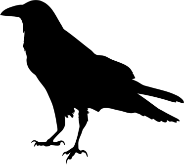 raven-silhouette-800px