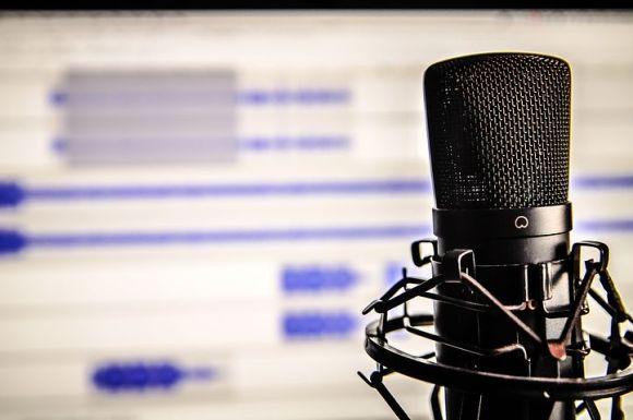 microphone-338481__480.jpg