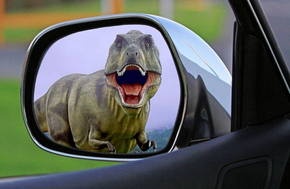 dinosaur-1564323__480